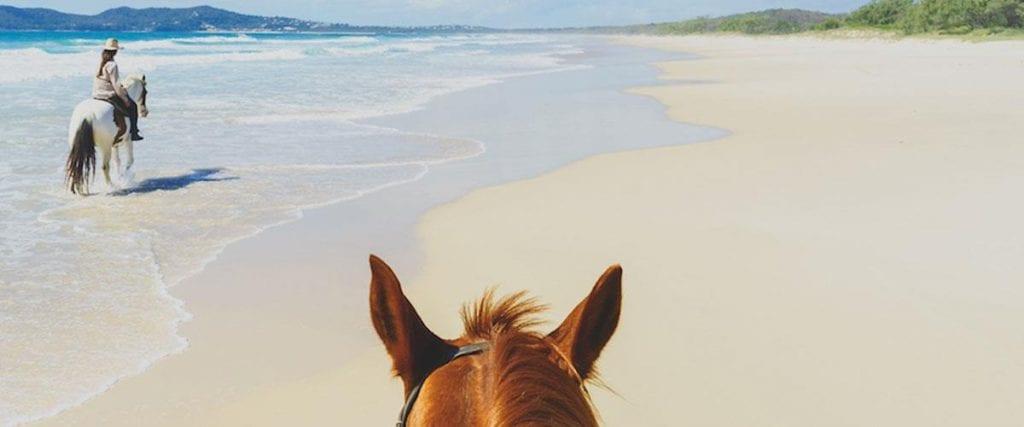 Social Horse Riding